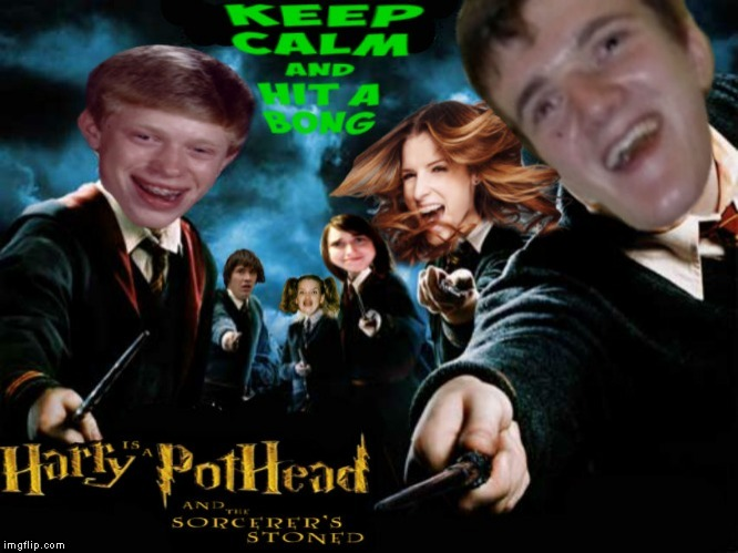 Still can't figure out owl mail.. | image tagged in harry pothead,harry potter crazy | made w/ Imgflip meme maker