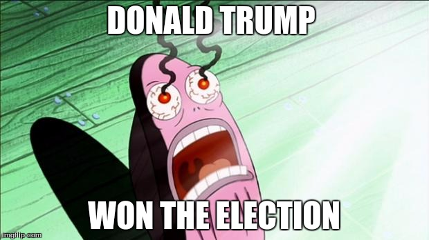 Spongebob My Eyes | DONALD TRUMP WON THE ELECTION | image tagged in spongebob my eyes | made w/ Imgflip meme maker