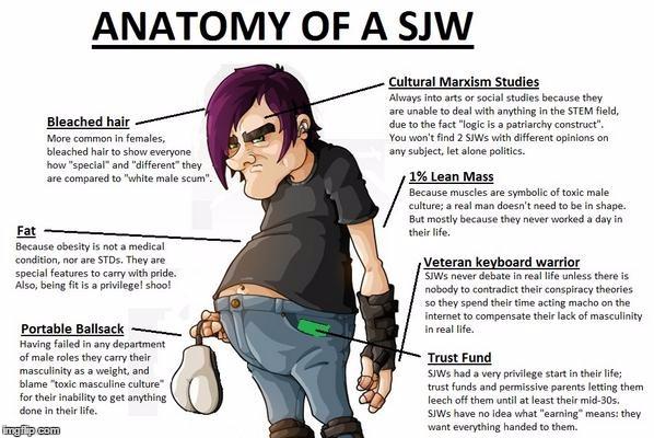 14nq00 anatomy of a sjw rebrn com