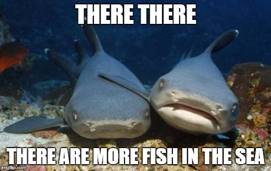 empathetic shark | THERE THERE THERE ARE MORE FISH IN THE SEA | image tagged in empathetic shark | made w/ Imgflip meme maker