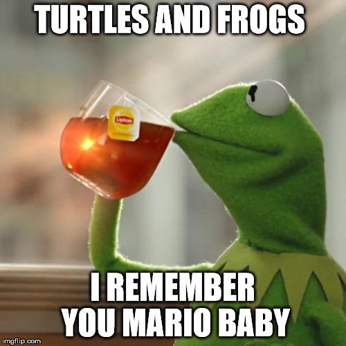 But Thats None Of My Business Meme | TURTLES AND FROGS I REMEMBER YOU MARIO BABY | image tagged in memes,but thats none of my business,kermit the frog | made w/ Imgflip meme maker