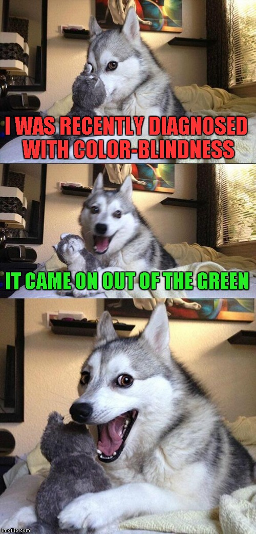 Bad Pun Dog Meme | I WAS RECENTLY DIAGNOSED WITH COLOR-BLINDNESS IT CAME ON OUT OF THE GREEN | image tagged in memes,bad pun dog | made w/ Imgflip meme maker