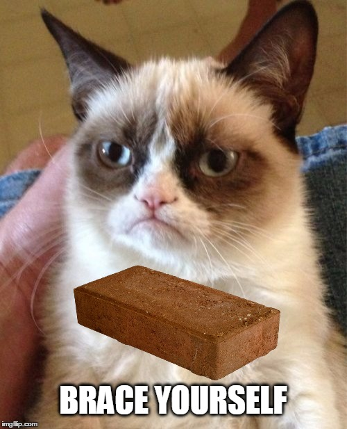 Brace yourself. |  BRACE YOURSELF | image tagged in brace yourselves x is coming,grumpy cat,grumpy cat brick,brace yourself,brick,stanley kubrick | made w/ Imgflip meme maker
