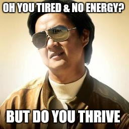 Mr Chow |  OH YOU TIRED & NO ENERGY? BUT DO YOU THRIVE | image tagged in mr chow | made w/ Imgflip meme maker