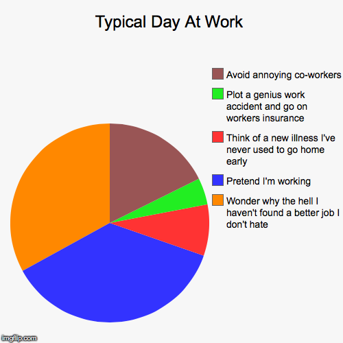 my typical day at work