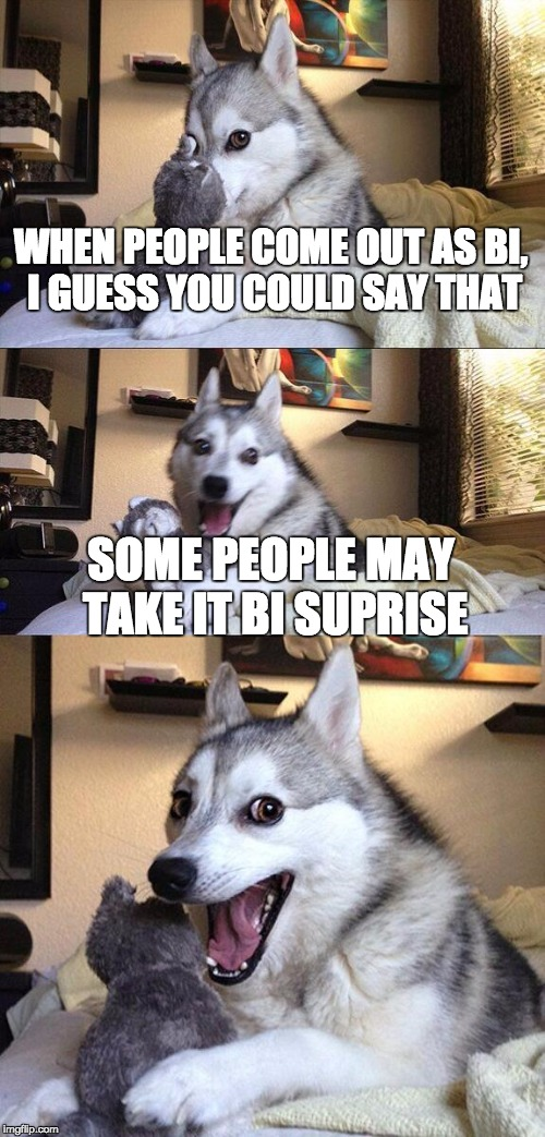 Bi-Suprise | WHEN PEOPLE COME OUT AS BI, I GUESS YOU COULD SAY THAT SOME PEOPLE MAY TAKE IT BI SUPRISE | image tagged in memes,bad pun dog,lgbt,bi,bisexual,punny | made w/ Imgflip meme maker