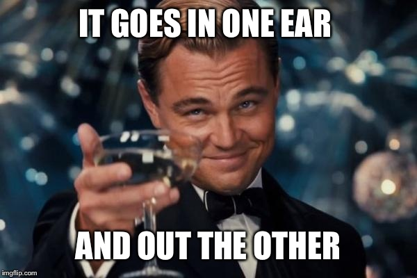 Leonardo Dicaprio Cheers Meme | IT GOES IN ONE EAR AND OUT THE OTHER | image tagged in memes,leonardo dicaprio cheers | made w/ Imgflip meme maker