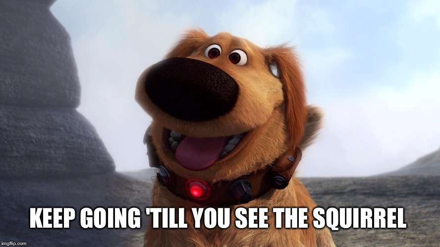 KEEP GOING 'TILL YOU SEE THE SQUIRREL | made w/ Imgflip meme maker