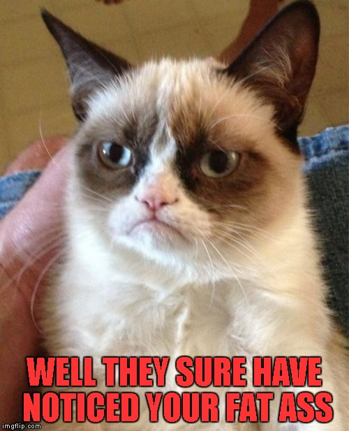Grumpy Cat Meme | WELL THEY SURE HAVE NOTICED YOUR FAT ASS | image tagged in memes,grumpy cat | made w/ Imgflip meme maker