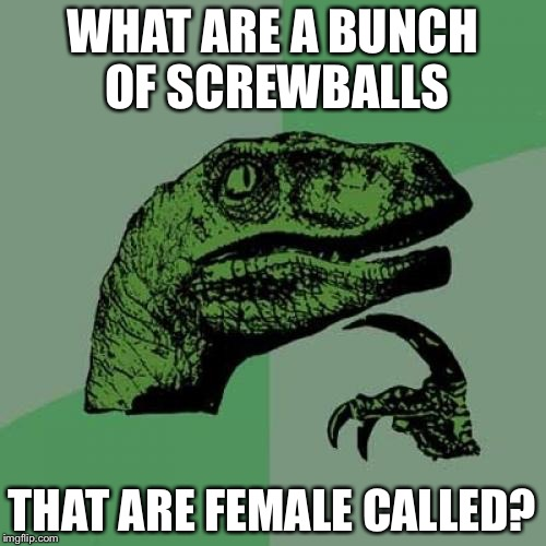 Philosoraptor Meme | WHAT ARE A BUNCH OF SCREWBALLS THAT ARE FEMALE CALLED? | image tagged in memes,philosoraptor | made w/ Imgflip meme maker