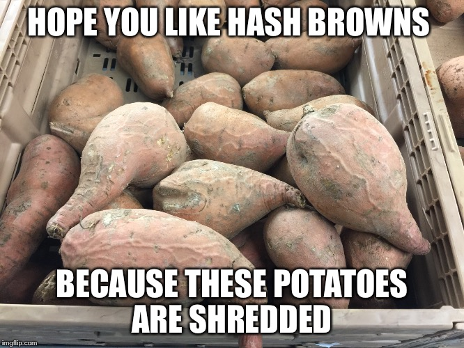 Potatoes that lift | HOPE YOU LIKE HASH BROWNS BECAUSE THESE POTATOES ARE SHREDDED | image tagged in gym,gymlife,fitness,weight lifting,crossfit,do you even lift | made w/ Imgflip meme maker