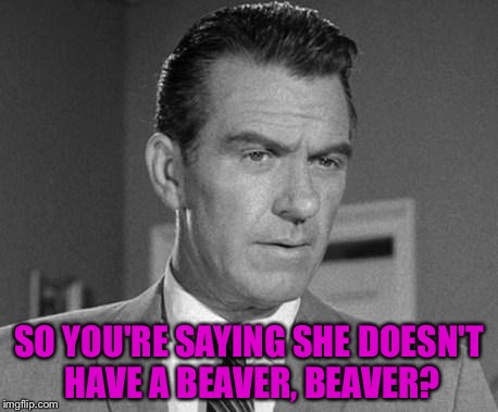 SO YOU'RE SAYING SHE DOESN'T HAVE A BEAVER, BEAVER? | made w/ Imgflip meme maker