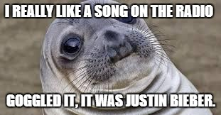 Akward moment seal | I REALLY LIKE A SONG ON THE RADIO GOGGLED IT, IT WAS JUSTIN BIEBER. | image tagged in akward moment seal | made w/ Imgflip meme maker