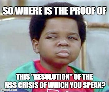 "BUDGETS, DELAYS, AND BUFFALOS |  SO WHERE IS THE PROOF OF; THIS ""RESOLUTION"" OF THE NSS CRISIS OF WHICH YOU SPEAK? 