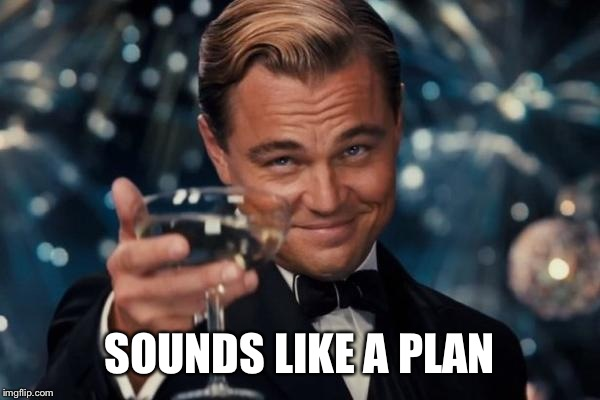Leonardo Dicaprio Cheers Meme | SOUNDS LIKE A PLAN | image tagged in memes,leonardo dicaprio cheers | made w/ Imgflip meme maker
