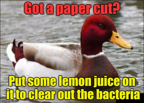 Malicious Advice Mallard Meme | Got a paper cut? Put some lemon juice on it to clear out the bacteria | image tagged in memes,malicious advice mallard,paper cuts,trhtimmy | made w/ Imgflip meme maker
