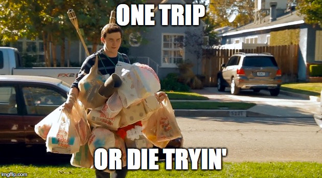 ONE TRIP OR DIE TRYIN' | image tagged in groceries | made w/ Imgflip meme maker
