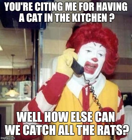 ronald mcdonalds call | YOU'RE CITING ME FOR HAVING A CAT IN THE KITCHEN ? WELL HOW ELSE CAN WE CATCH ALL THE RATS? | image tagged in ronald mcdonalds call | made w/ Imgflip meme maker