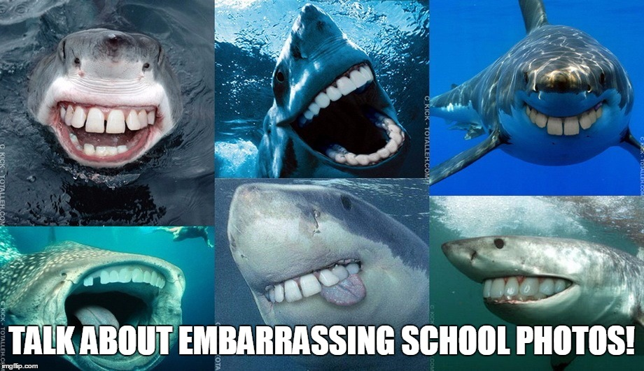Sharks With Human Teeth | TALK ABOUT EMBARRASSING SCHOOL PHOTOS! | image tagged in memes,funny,animals,sharks,teeth,human | made w/ Imgflip meme maker