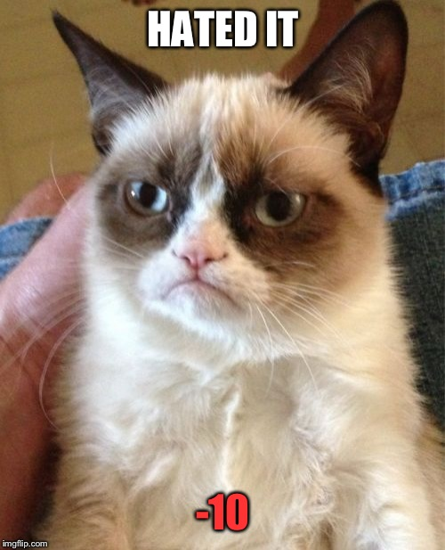 Grumpy Cat Meme | HATED IT -10 | image tagged in memes,grumpy cat | made w/ Imgflip meme maker