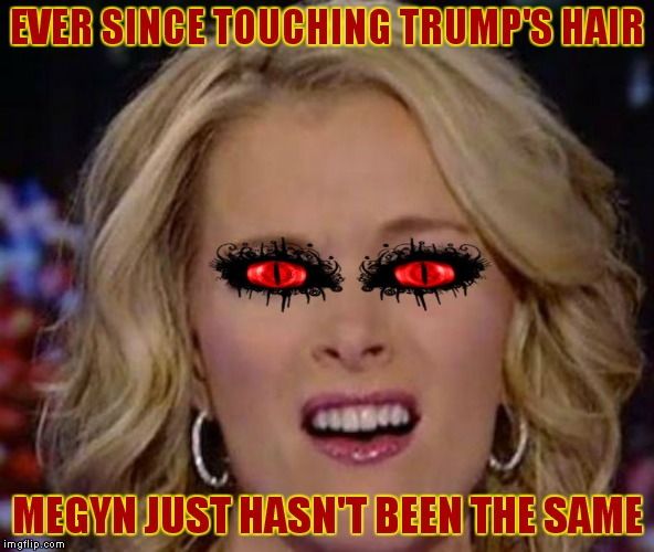 What did she expect?? | EVER SINCE TOUCHING TRUMP'S HAIR MEGYN JUST HASN'T BEEN THE SAME | image tagged in megyn kelly,donald trump hair | made w/ Imgflip meme maker