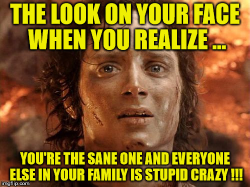 Its Finally Over Meme | THE LOOK ON YOUR FACE WHEN YOU REALIZE ... YOU'RE THE SANE ONE AND EVERYONE ELSE IN YOUR FAMILY IS STUPID CRAZY !!! | image tagged in memes,its finally over | made w/ Imgflip meme maker