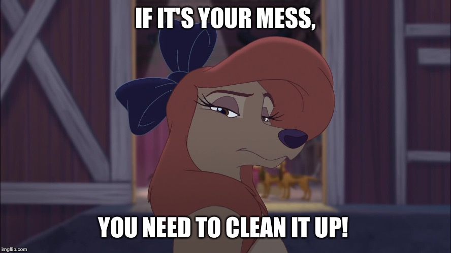If It's Your Mess, You Need To Clean It Up! |  IF IT'S YOUR MESS, YOU NEED TO CLEAN IT UP! | image tagged in dixie serious,memes,disney,the fox and the hound 2,reba mcentire,dog | made w/ Imgflip meme maker