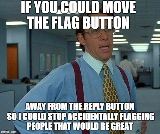 That Would Be Great Meme | IF YOU COULD MOVE THE FLAG BUTTON AWAY FROM THE REPLY BUTTON SO I COULD STOP ACCIDENTALLY FLAGGING PEOPLE THAT WOULD BE GREAT | image tagged in memes,that would be great | made w/ Imgflip meme maker