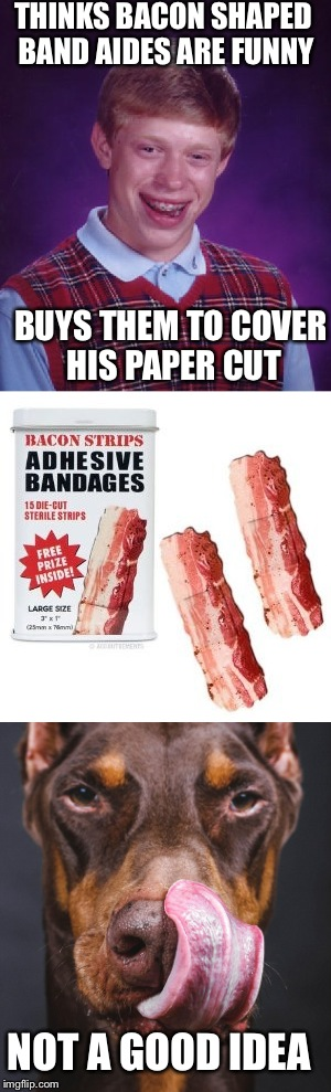 Bacon & Band Aides Fix Everything But Stupid  | THINKS BACON SHAPED BAND AIDES ARE FUNNY BUYS THEM TO COVER HIS PAPER CUT NOT A GOOD IDEA | image tagged in bad luck brian,bacon,memes,lol,lynch1979 | made w/ Imgflip meme maker