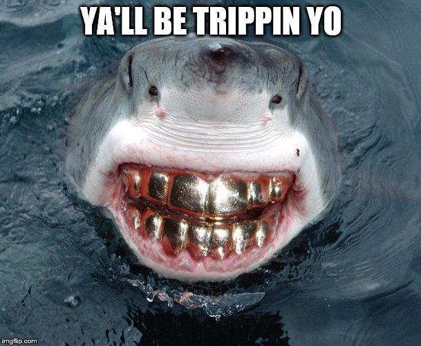 Sharks with human teeth - photo#50