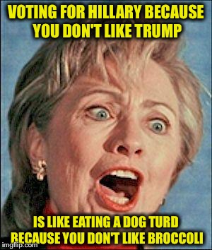 It's like a turd sandwich | VOTING FOR HILLARY BECAUSE YOU DON'T LIKE TRUMP IS LIKE EATING A DOG TURD BECAUSE YOU DON'T LIKE BROCCOLI | image tagged in ugly hillary clinton,trump,election 2016,memes | made w/ Imgflip meme maker