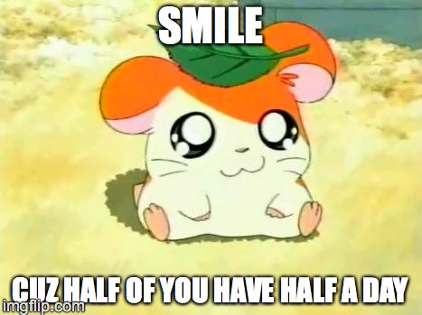 Hamtaro | SMILE CUZ HALF OF YOU HAVE HALF A DAY | image tagged in memes,hamtaro | made w/ Imgflip meme maker