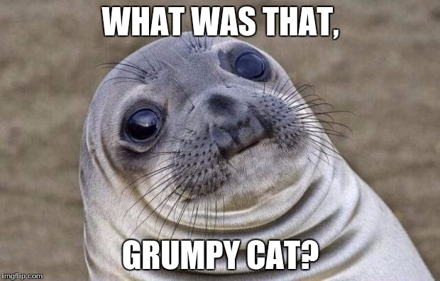 Awkward Moment Sealion Meme | WHAT WAS THAT, GRUMPY CAT? | image tagged in memes,awkward moment sealion | made w/ Imgflip meme maker