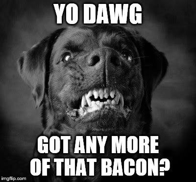 YO DAWG GOT ANY MORE OF THAT BACON? | made w/ Imgflip meme maker