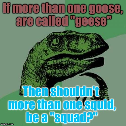 "If You Think About It, Doesn't It Make Sense? | If more than one goose, are called ""geese"" Then shouldn't more than one squid, be a ""squad?"" 