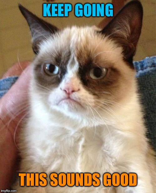 Grumpy Cat Meme | KEEP GOING THIS SOUNDS GOOD | image tagged in memes,grumpy cat | made w/ Imgflip meme maker
