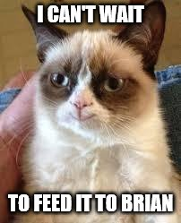 Grumpy Cat Happy Meme | I CAN'T WAIT TO FEED IT TO BRIAN | image tagged in grumpy cat smile | made w/ Imgflip meme maker
