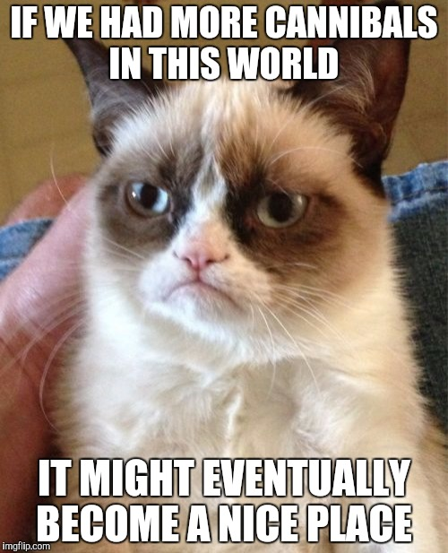 Grumpy Cat Meme | IF WE HAD MORE CANNIBALS IN THIS WORLD IT MIGHT EVENTUALLY BECOME A NICE PLACE | image tagged in memes,grumpy cat | made w/ Imgflip meme maker