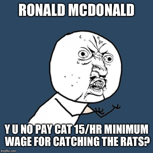 Y U No Meme | RONALD MCDONALD Y U NO PAY CAT 15/HR MINIMUM WAGE FOR CATCHING THE RATS? | image tagged in memes,y u no | made w/ Imgflip meme maker