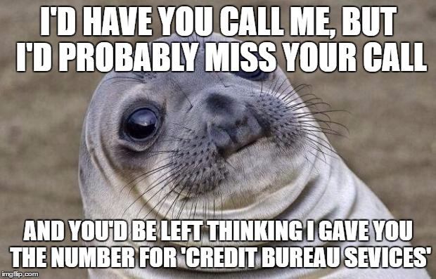 Awkward Moment Sealion Meme | I'D HAVE YOU CALL ME, BUT I'D PROBABLY MISS YOUR CALL AND YOU'D BE LEFT THINKING I GAVE YOU THE NUMBER FOR 'CREDIT BUREAU SEVICES' | image tagged in memes,awkward moment sealion | made w/ Imgflip meme maker