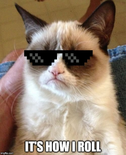 Grumpy Cat Meme | IT'S HOW I ROLL | image tagged in memes,grumpy cat | made w/ Imgflip meme maker