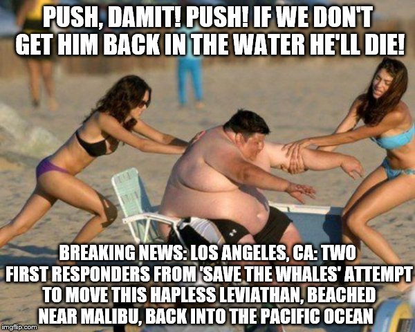 'Do Gooders' in Action:  A case of mistaken identity | PUSH, DAMIT! PUSH! IF WE DON'T GET HIM BACK IN THE WATER HE'LL DIE! BREAKING NEWS: LOS ANGELES, CA: TWO FIRST RESPONDERS FROM 'SAVE THE WHAL | image tagged in women helping fat guy,memes,fat guy,breaking news,pacific,funny | made w/ Imgflip meme maker