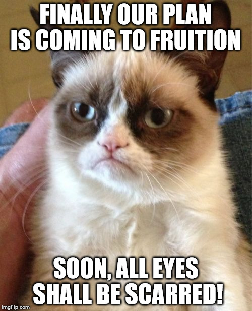 Grumpy Cat Meme | FINALLY OUR PLAN IS COMING TO FRUITION SOON, ALL EYES SHALL BE SCARRED! | image tagged in memes,grumpy cat | made w/ Imgflip meme maker