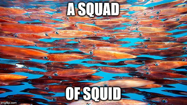 A SQUAD OF SQUID | made w/ Imgflip meme maker
