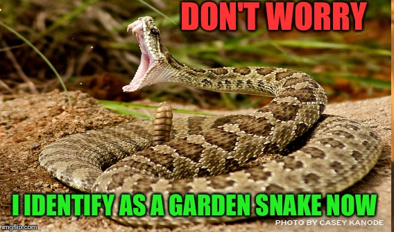Snakes Can Be Sneaky  | DON'T WORRY I IDENTIFY AS A GARDEN SNAKE NOW | image tagged in lynch1979,memes,lol,rattlesnake | made w/ Imgflip meme maker
