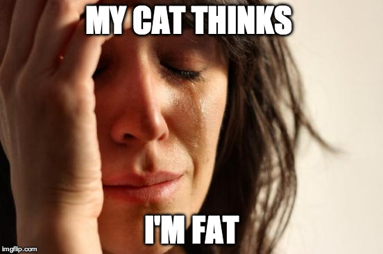 Cat Lady First World Problems | MY CAT THINKS I'M FAT | image tagged in memes,first world problems,cats,cat lady,fat | made w/ Imgflip meme maker