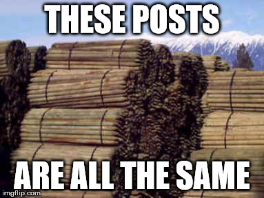 THESE POSTS ARE ALL THE SAME | THESE POSTS ARE ALL THE SAME | image tagged in posts,same,repeating,redundant,posts are all the same,same posts | made w/ Imgflip meme maker
