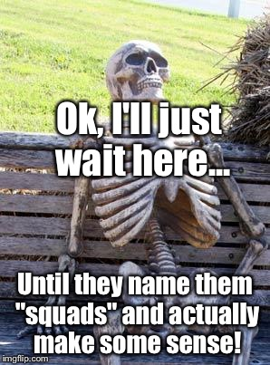 "Waiting Skeleton Meme | Ok, I'll just wait here... Until they name them ""squads"" and actually make some sense! 