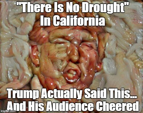 """There Is No Drought"" In California Trump Actually Said This... And His Audience Cheered 