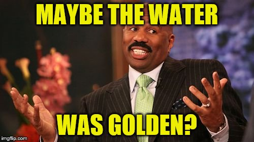 Steve Harvey Meme | MAYBE THE WATER WAS GOLDEN? | image tagged in memes,steve harvey | made w/ Imgflip meme maker